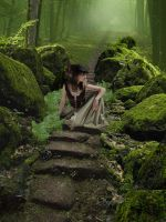 Robin Hood's Forest by bleu-claire-stock