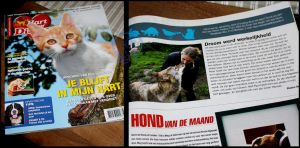 My photo in Hart Voor Dieren by AzureHowlShilach