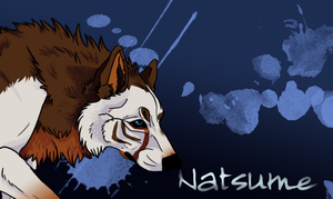 Natsume by SpiritDragonWolf