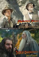 Oakencrossover #17: Indiana Jones and the Last... by PeckishOwl