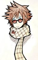Sora likes Sunglasses and Scarves by midousuji