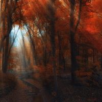 middle earth by ildiko-neer