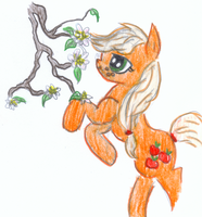 Mah lil' Apple Blossoms by VegemiteGuzzler