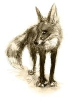 Scribbly Dream Fox by Lupuna