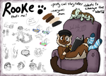 About Rooke - Reference by DragonwolfRooke