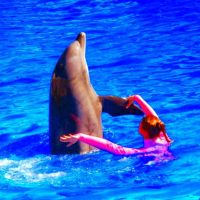 Dancing with Dolphins by Germanicus-Fink