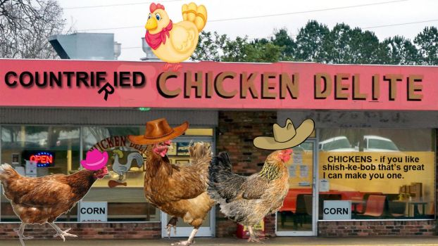 Where The Countrified Chicken Go To Eat Or Be Eate by sindhoorella
