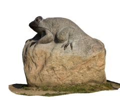 stone frog by mirandaarts
