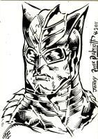 Nite Owl by PeterPalmiotti