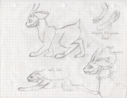 new species sketches by HikaruisAves