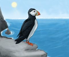 A Lonesome Puffin by Kimmerze