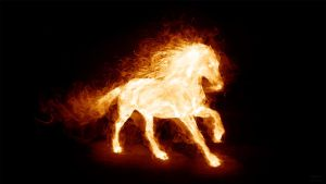 Fire horse by tomhotovy