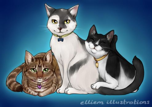 3 Cats Commission by Kinky-chichi