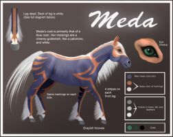 Meda- Reference Sheet by ArtLover25