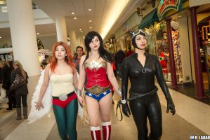 DC Plastics: Wonder Woman, Hawkgirl, Catwoman by BevanMaria