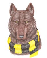 The Hufflepuff Wolf by WinterWolf10