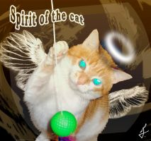 Spirit of the cat by ricky4