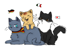 neko Axis powers by herra97