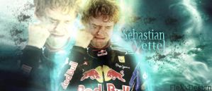 Sebastian Vettel Signature by FleXxDesign