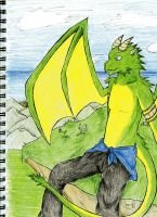 A Dragon by the Cliff by PaashTheSneasel
