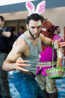 Easter Wolverine by EriTesPhoto