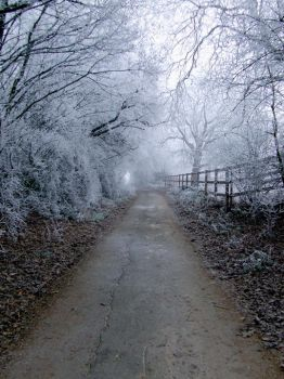 snow way by absorbed