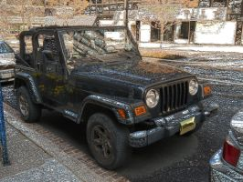 Jeep with Gold Licence Plate by Chlodulfa