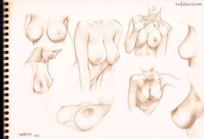Boobs Studies By Rafater by rafater