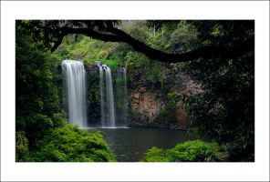Dangar Falls Revisited by Cameron-Jung