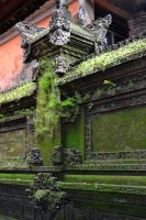 Balinese Living Wall by MayEbony