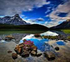 Waterfowl Lake I, Banff NP by gursesl