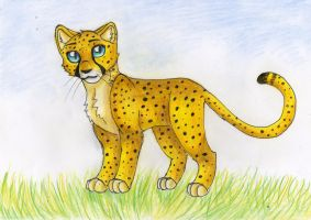 cheeta by helenacat