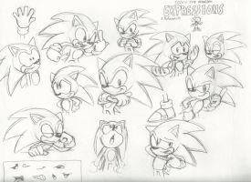 Sonic expressions by Camo-the-Porcupine