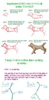 Basic Animal Tutorial by Morgan-Michele