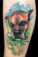 boxer by maximolutztattoo