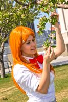 Beautiful flower --- Orihime by jujub