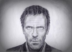 Hugh Laurie by Annesaar