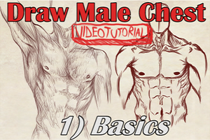 VideoTutorial on Drawing the Male Chest Front View by Dex91