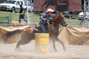 Taupo rodeo 203 by Sooty-Bunnie