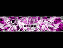 ev0lution by wix