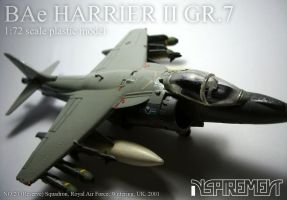 BAe HARRIER II GR.7 #3 by Inspirement