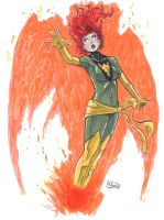SOLD OUT: Phoenix by Shono