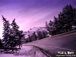Road to the north pole by Cat-n-White