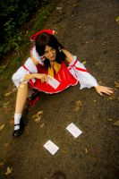 Defeated Reimu 2 - This is not the end! by simakai