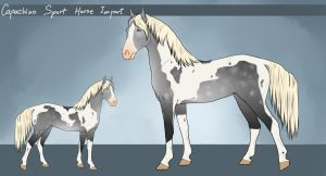 Capuchino Sport Horse - Custom Import #49 by LeeyaKuchuk