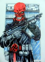 Red Skull (older) by PM-Graphix