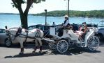 A Horse and Carriage by fishman4tos