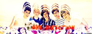 One Direction Facebook Cover by AnelEditons