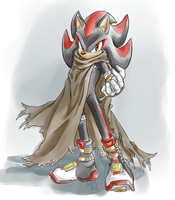 .: SONIC BOOM : Shadow :. by carriepika