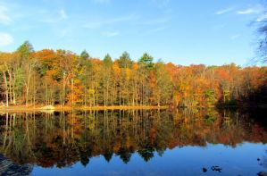 Autumn Reflections by RealityIntolerant